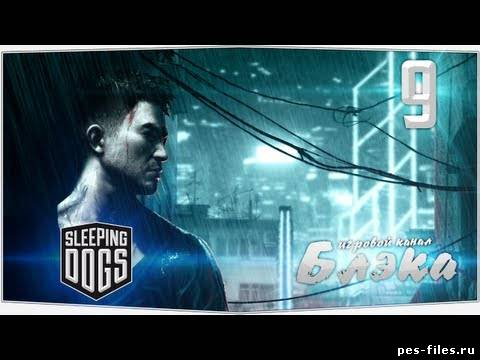 Sleeping Dogs #9 - Слежка