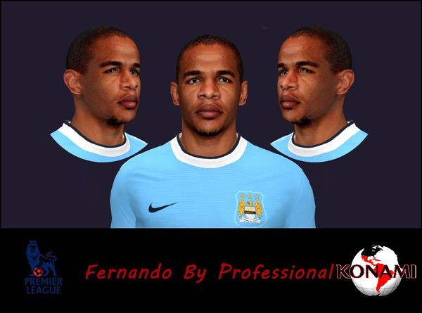 Pes 2014 Face Fernando by Professional