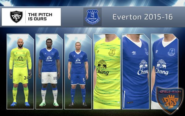 Everton 2015/16 Home & GK kit