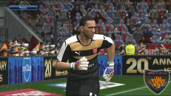 "PES 2016 PUMA evoPOWER ""POP"" Gloves"