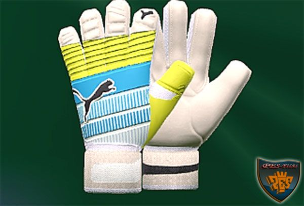 Update Goalkeeper Gloves February 2016