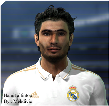 Pes 2011 Hamit Altintop Face